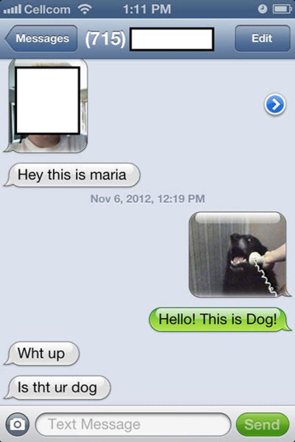 20-funniest-answers-wrong-number-text-11