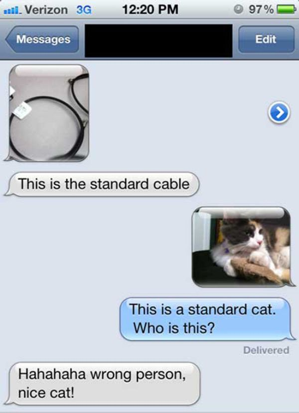 20-funniest-answers-wrong-number-text-17